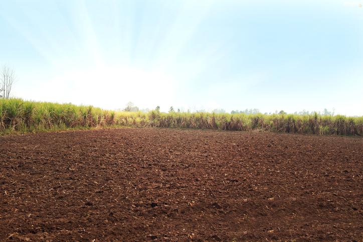 Flat in Indirapuram